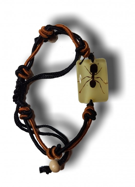 Geknotetes Armband mit echter, eingegossener Ameise