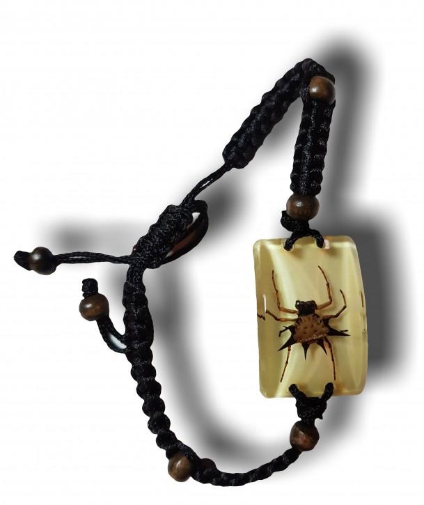 Geflochtenes Armband mit echter Dornspinne