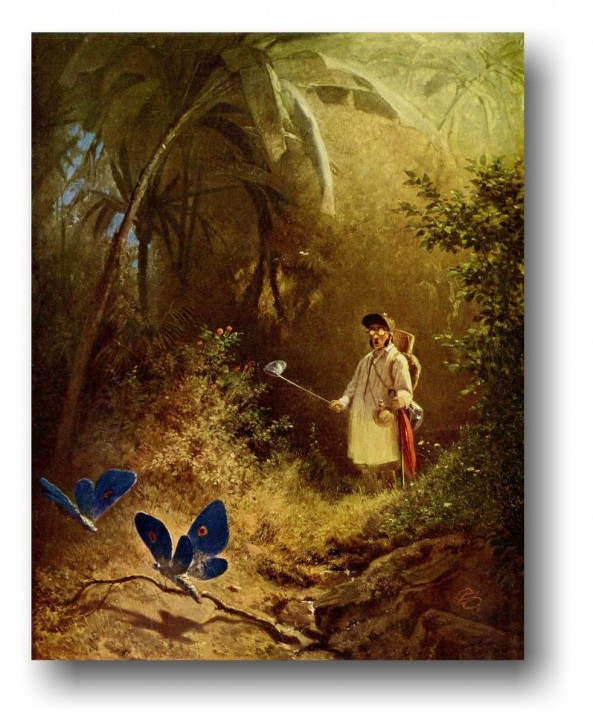 Leinwanddruck auf Keilrahmen Spitzweg-Der Schmetterlingsjäger