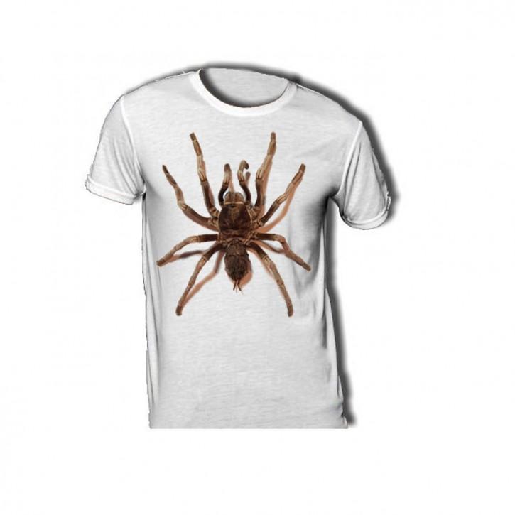T-Shirt mit großer Vogelspinne - Acanthoscurria ferina