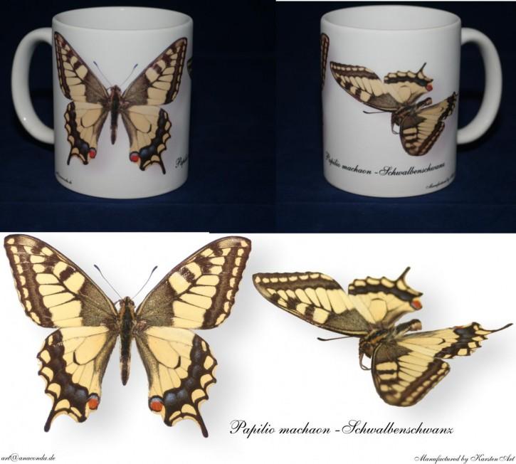 Papilio machaon - Schwalbenschwanz